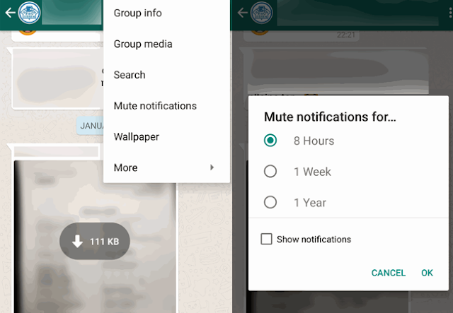 WhatsApp Web, whatsapp profile pic download, whatsapp mute notification, whatsapp hidden features, whatsapp features, whatsapp auto download setting, WhatsApp, live location tracking in whatsapp, tech News