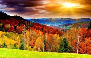 Scenery.Image