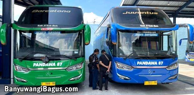 Bus Pandawa87 buka rute Jakarta-Banyuwangi dengan Sleeper Bus