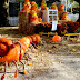 53 Fun Halloween Events Around the World