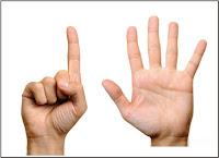 Soal Online K13 Kelas 1 SD Tema 1 Diriku Subtema 2 Tubuhku Dan Kunci Jawaban