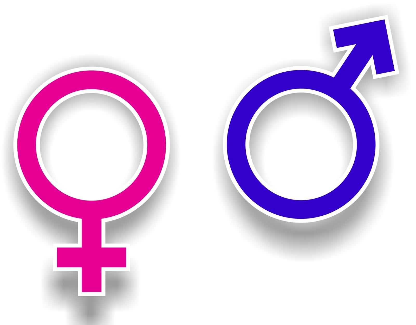 Hasil gambar untuk Perubahan sistem reproduksi