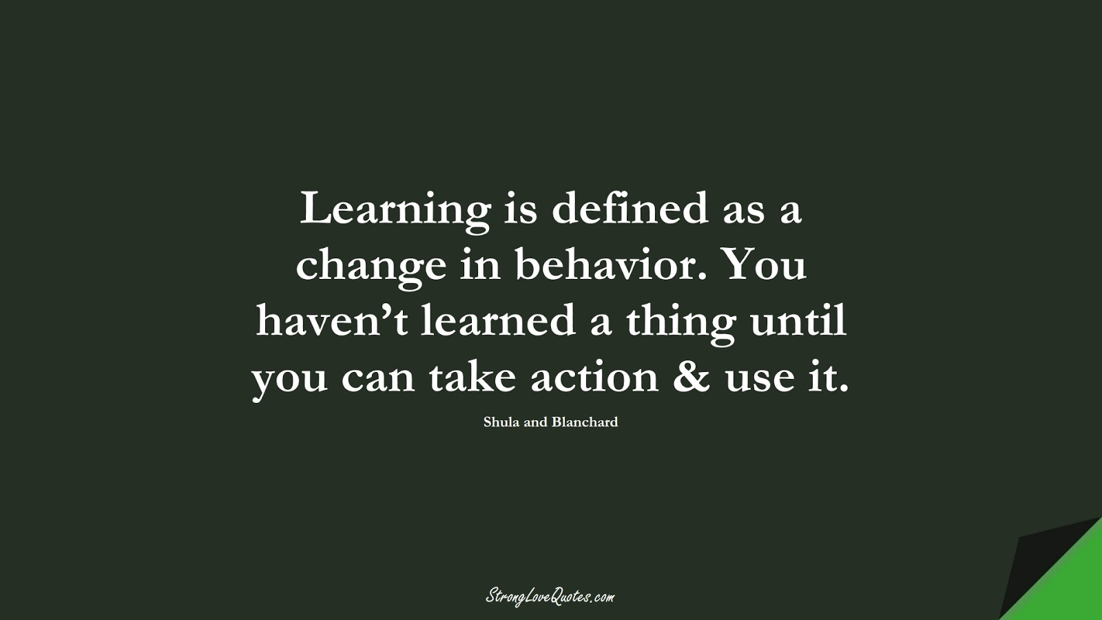 Learning is defined as a change in behavior. You haven't learned a thing until you can take action & use it. (Shula and Blanchard);  #LearningQuotes