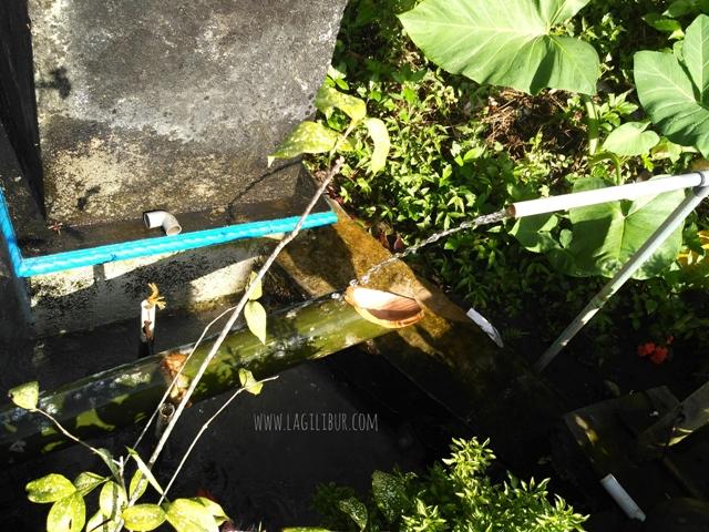 Surthong Desa Wisata Pancoh Sleman DIY