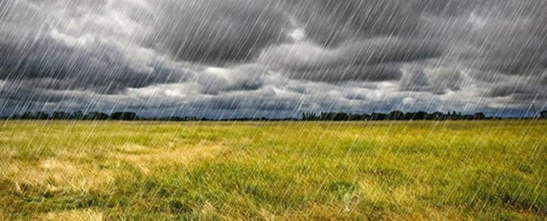 المطر والمحاصيل الزراعية