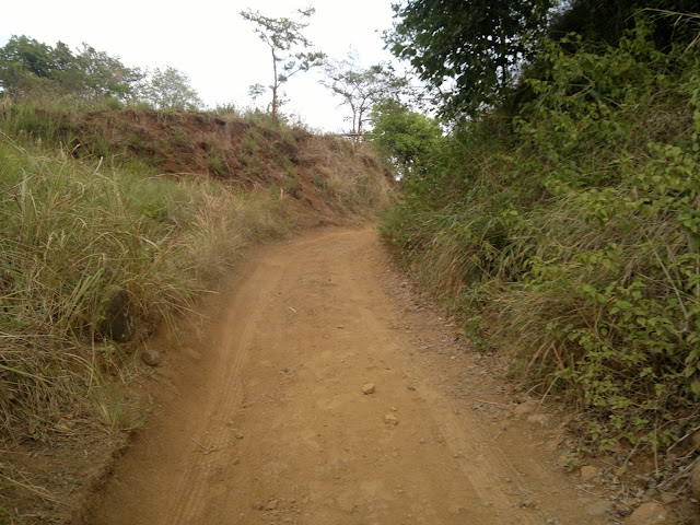 Canding Falls Road