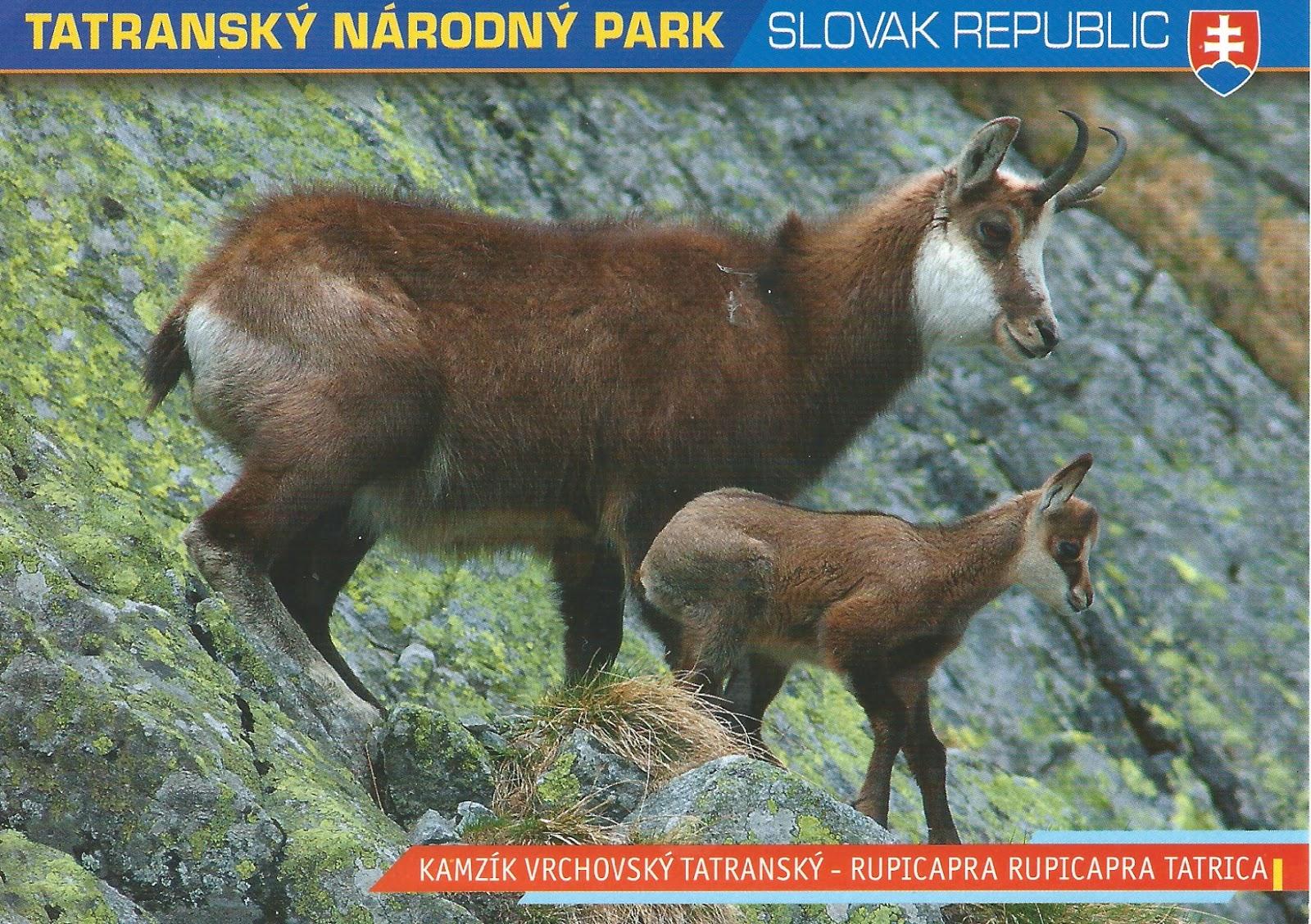 MY POSTCARD PAGE SLOVAKIA Tatras National Park