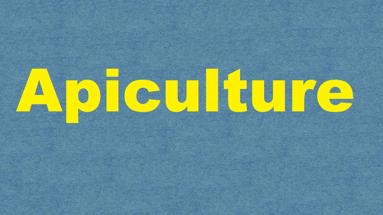 Apiculture ICAR Ecourse Free PDF Book Download e krishi shiksha