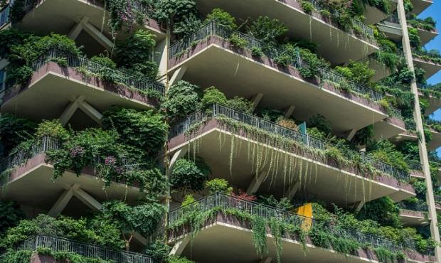 China: plantas invaden residencia y convierten el edificio en un bosque