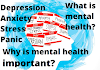 Mental Health Facts-Why is mental health important?