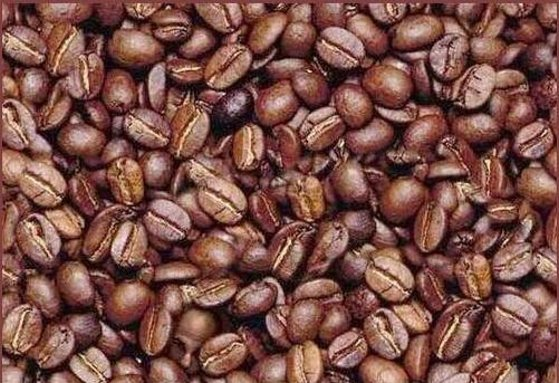 Hidden Face in Coffee Bean Picture Puzzle