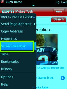 cara menggunakan screen grabber