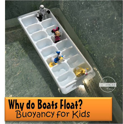 Buoyancy for kids - why do boats float science project for kids