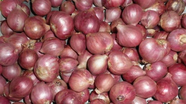 Segudang Manfaat Bawang Merah Untuk Kesehatan