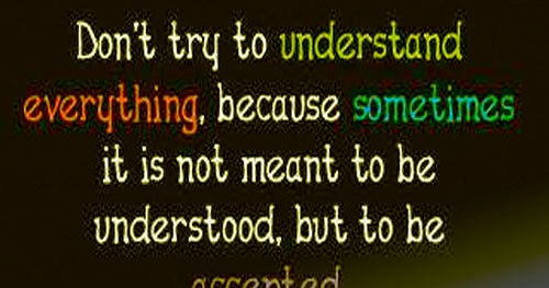 Don't Try To Understand Everything, Because Sometimes It