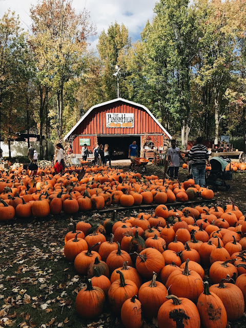 best thanksgiving getaways from nyc