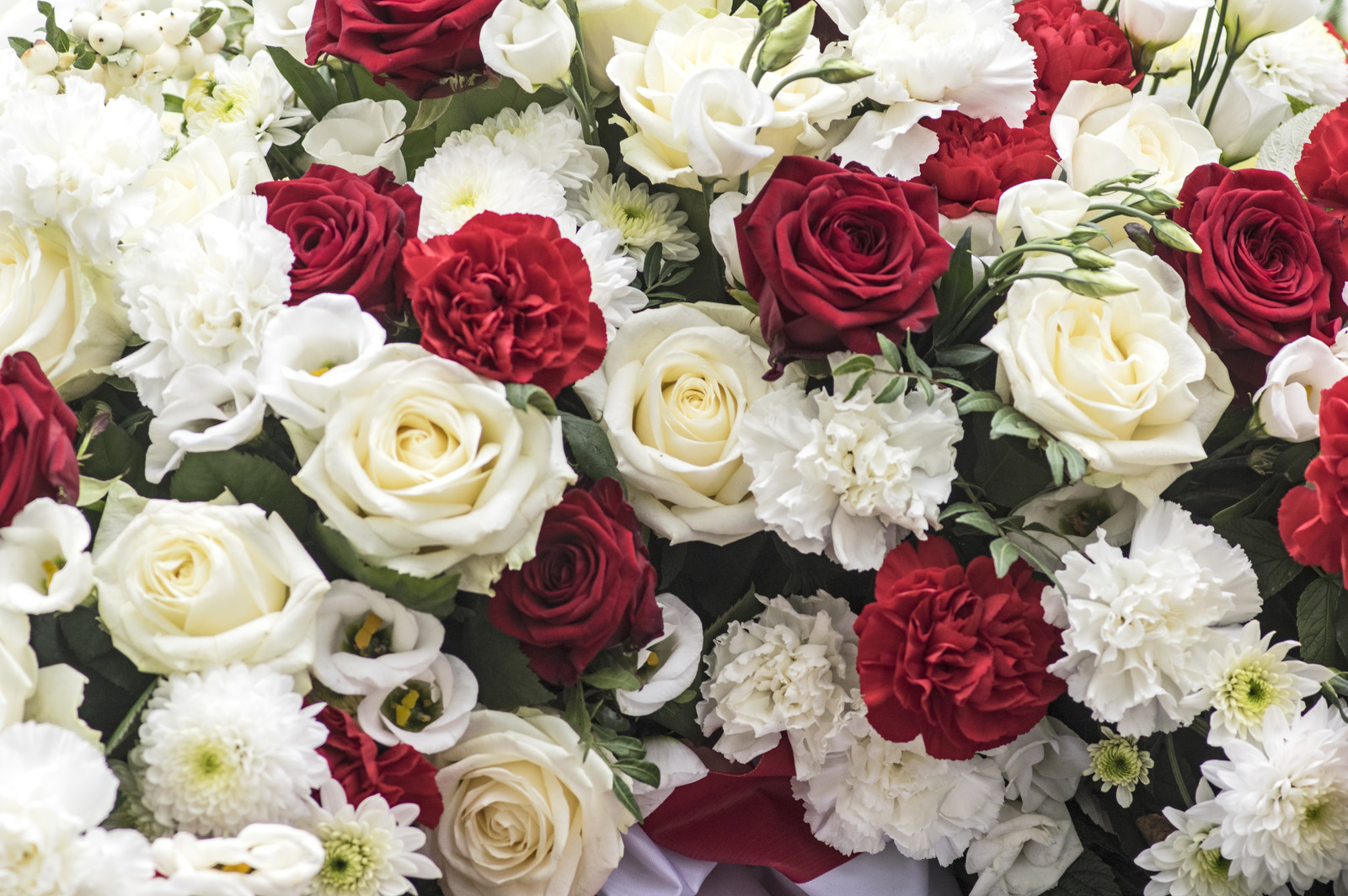 Scottish genealogy tips and tidbits away with the fairies it was believed that a bouquet of red and white flowers was a signal that death was imminent the red signaling blood mightylinksfo