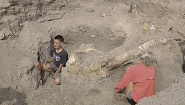 This Boy Accidentally Discover Fossils Millions Of Years Old