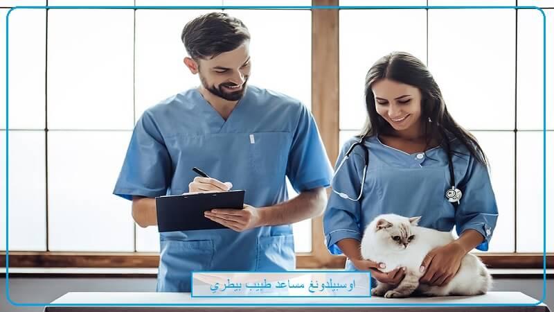 جميع المعلومات عن  اوسبيلدونغ مساعد طبيب بيطري Tiermedizinische/r Fachangestellte/r في المانيا باللغة العربية 2020 2022 2021 2023 شروط اوسبيلدونغ دكتور بيطرة