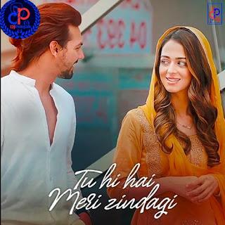Tu-Hi-Hai-Meri-Zindgi-Nikhil-D-Souza