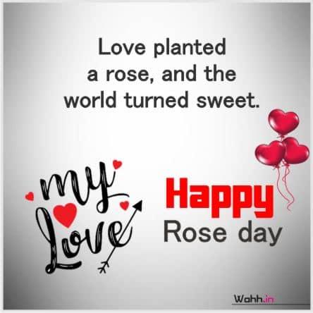 Rose Day Status For Whatsapp Instagram