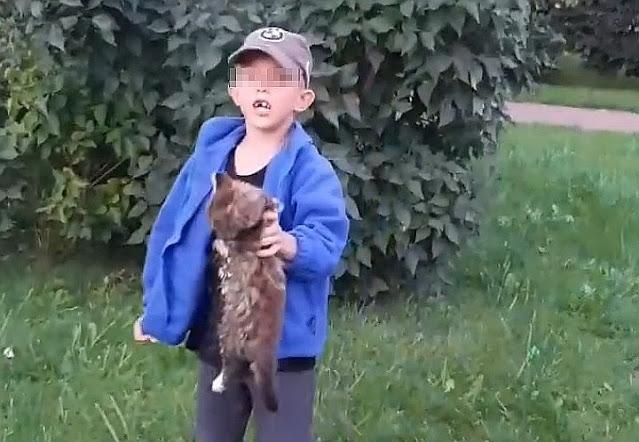 «Хотел прославиться в интернете»: мама мальчика, жестоко избившего кота, объяснила поступок сына