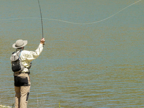 Fly Casting – 5 Types You Should Know