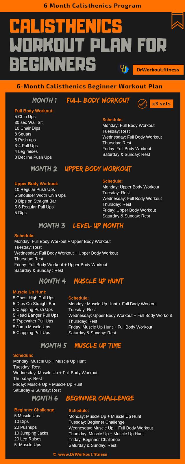 calisthenics workout plan for