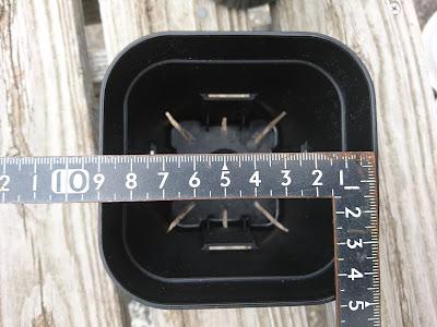 1辺9センチ