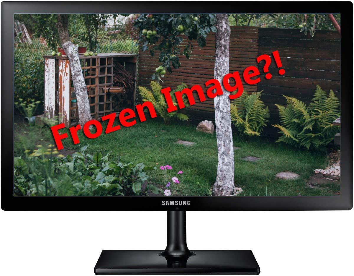 Frozen Security Cameras