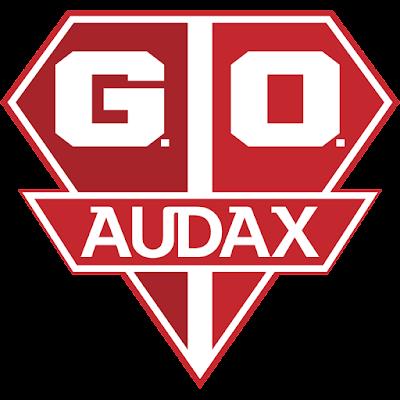 GRÊMIO OSASCO AUDAX