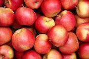 सेब खाने के 10 अमूल्य लाभ