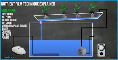 Cara kerja Hidroponik Sistem NFT