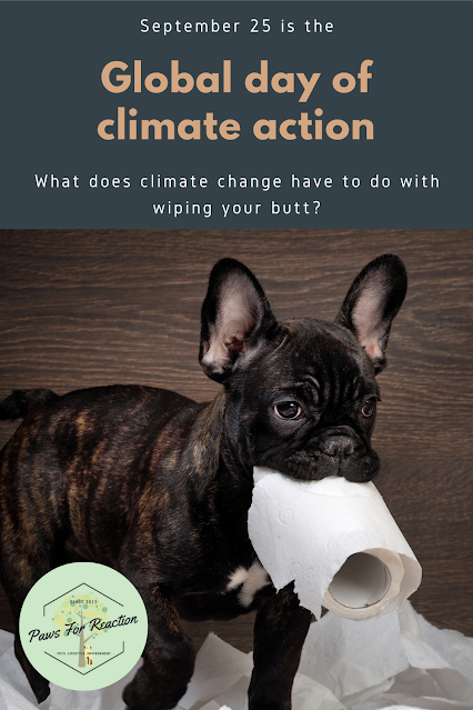 What does climate change have to do with wiping your butt?