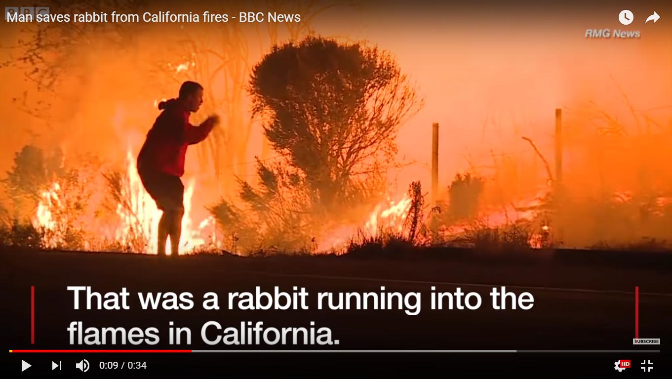 Kisah Inspiratif Seorang Pemuda Pada Kebakaran yang Terjadi di California