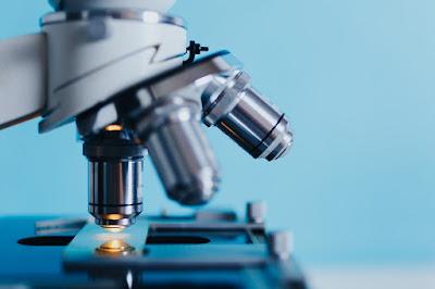 Apa itu Bioteknologi Konvensional?