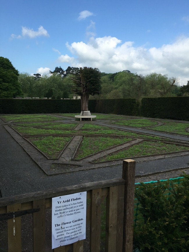 garden-with-sign-saying-the-flower-garden.-this-year-we-are-sowing-annual-flower-mix-in-this-garden-the-garden-willremain-closed-to-allow-the-plants-to-establish