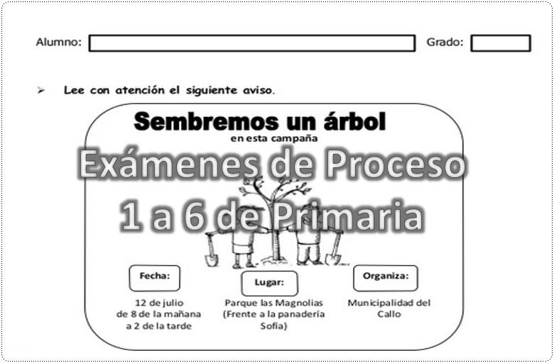 examenes de proceso de 1 a 6 grado primaria