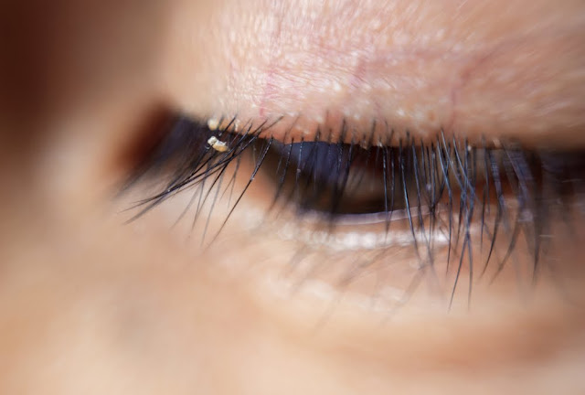 Bagaimana Hukum Memakai Bulu Mata Palsu Menurut Islam?