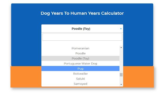 dogscorner dog years to human years calculator malaysia blogger