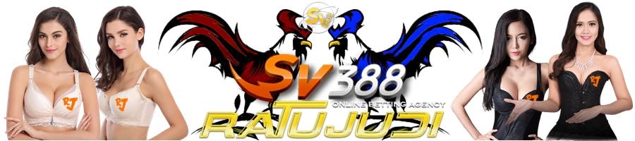 Judi Sv388
