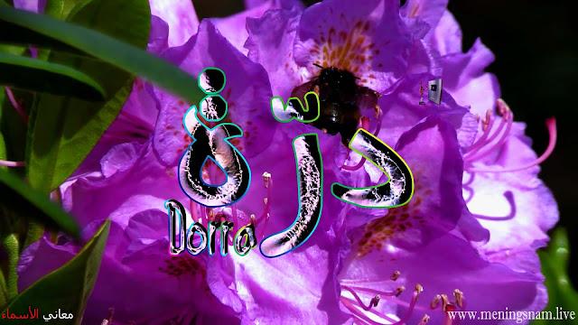 معنى اسم درة وصفات حاملة هذا الاسم Dorra