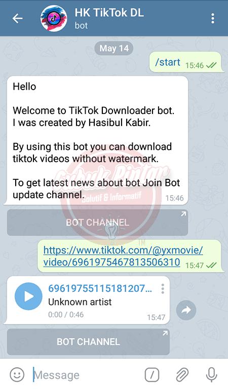 Cara Download Lagu TikTok di Telegram