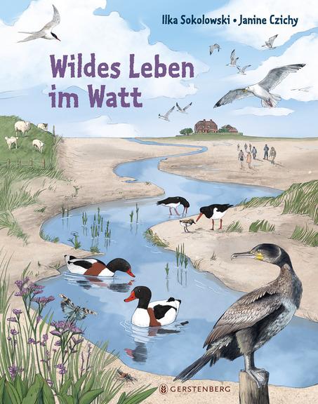 """Neue Geschichten vom Meer. Das Kinderbuch """"Wildes Leben im Watt"""" ist ein tolles Sachbuch für Kinder ab 6 Jahren und stellt die Tiere im Wattenmeer anschaulich vor."""