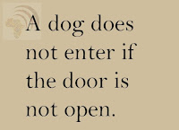 A dog does not enter if the door is not open.
