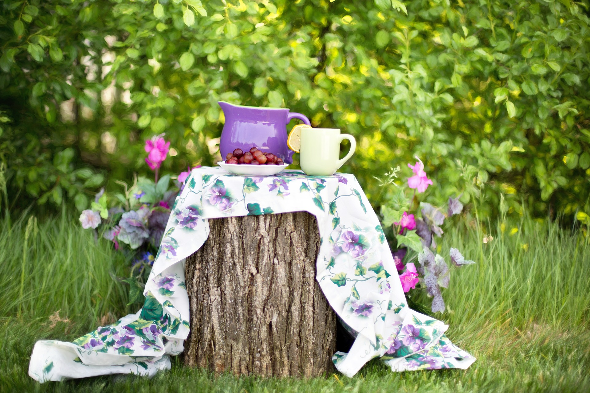 Benefits of Compost Tea