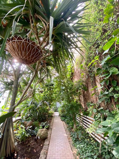Greenhouses in the Botanic Gardens, Valencia, Spain