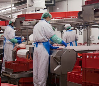 Urgent Hiring For Fresher 5th to 12th Pass or ITI All Trades Candidates For Food Industry Jaipur, Rajasthan