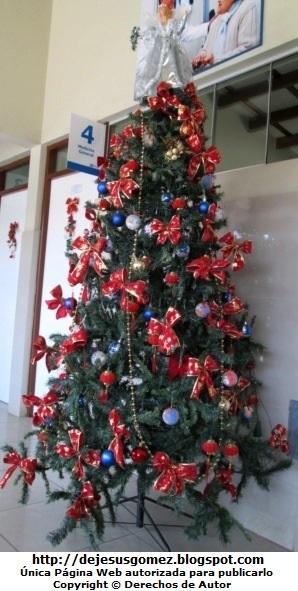 Árbol de Navidad en Medicina General del Hospital Negreiros (Callao - Perú). Foto de un Arbol de Navidad de Jesus Gómez