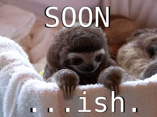 Funny Sloth Soon Soonish Meme Joke Photo